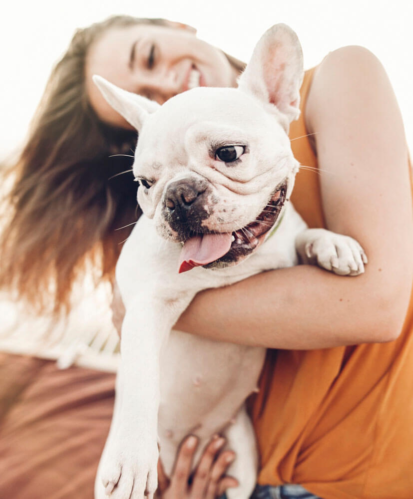 happy hipster woman playing with bulldog on the beach in sunset light, summer vacation. stylish girl with funny dog resting, hugging and having fun in sun, cute moments. space for text